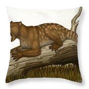 Thylacoleo Carnifex, A Marsupial Throw Pillow