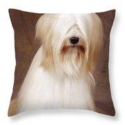 Tibetan Terrier Dog Throw Pillow