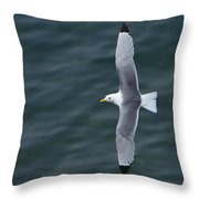 Tickle-ace  Throw Pillow