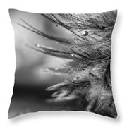 Tickle My Fancy Throw Pillow