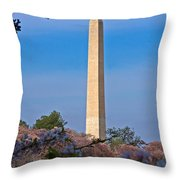 Tidal Basin Cherry Blossoms #2 Throw Pillow