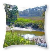 Tidal Creek In The Savannah Throw Pillow