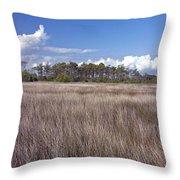 Tidal Marsh On Roanoke Island Throw Pillow