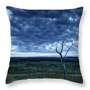 Tidal Marsh View Throw Pillow