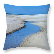 Tidal Pools Throw Pillow by Susan Leggett