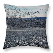 Tidal Wave Of Geese Throw Pillow