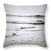 Tide Rolling In Throw Pillow