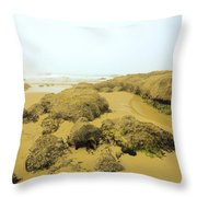 Tidepool Walkways Throw Pillow
