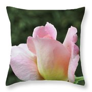 Tiffany Hybrid Rose Throw Pillow