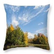 Tiffin Fall Throw Pillow