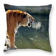 Tiger Breathing Into Cold Air By The Water Throw Pillow