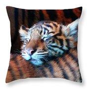 Tiger Cub Nap Throw Pillow