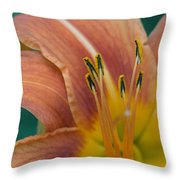 Tiger Daylily Throw Pillow