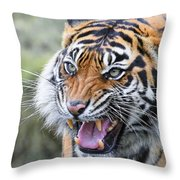 Tiger Growl Throw Pillow