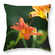 Tiger Lily And Bud   # Throw Pillow