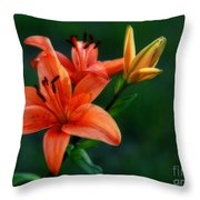 Tiger Lily Enchantment  Throw Pillow