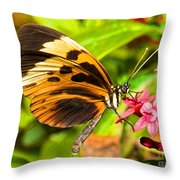 Tiger Mimic Butterfly Throw Pillow