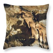 Tiger Of Baradla Throw Pillow
