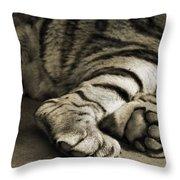 Tiger Paws Throw Pillow