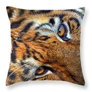 Tiger Peepers Throw Pillow