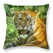 Tiger Resting Photo Art 05 Throw Pillow