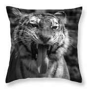 Tiger Say Aw Throw Pillow