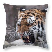 Tiger Smile Throw Pillow