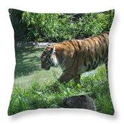Tiger Stroll Throw Pillow