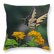 Tiger Swallowtail And Lantana Throw Pillow