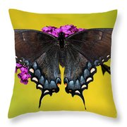 Tiger Swallowtail Butterfly, Dark Phase Throw Pillow