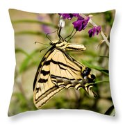 Tiger Swallowtail Butterfly Feeding Throw Pillow