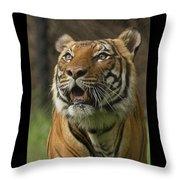 Tiger Symbol Of Throw Pillow