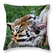 Tiger Tongue Throw Pillow by Dan Sproul
