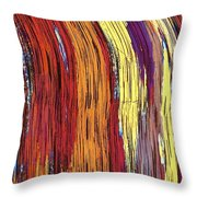 Tiger's Eye 12 Throw Pillow