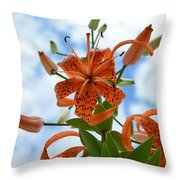 Tigers In The Clouds 8566 Throw Pillow