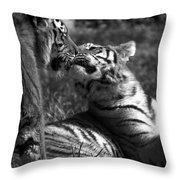 Tigers Kissing Throw Pillow