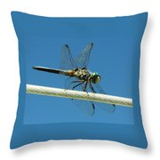 Tight Rope Walker Throw Pillow