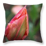 Tightly Closed Throw Pillow