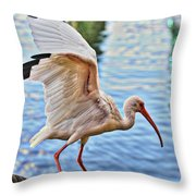Tightrope Walking Ibis Throw Pillow