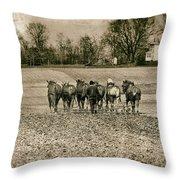 Tilling The Fields Throw Pillow by Tom Mc Nemar