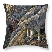 Timber Wolf Pictures 1094 Throw Pillow