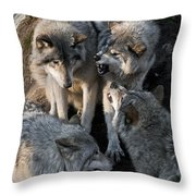 Timber Wolf Pictures 1096 Throw Pillow