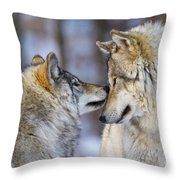 Timber Wolf Pictures 1230 Throw Pillow