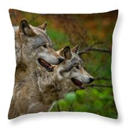 Timber Wolf Pictures 1710 Throw Pillow