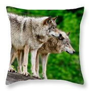 Timber Wolf Pictures 191 Throw Pillow