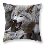 Timber Wolf Pictures 210 Throw Pillow