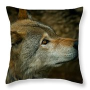 Timber Wolf Pictures 268 Throw Pillow