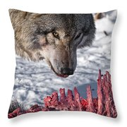 Timber Wolf Pictures 552 Throw Pillow