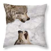 Timber Wolf Pictures 775 Throw Pillow