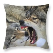 Timber Wolves Play Throw Pillow